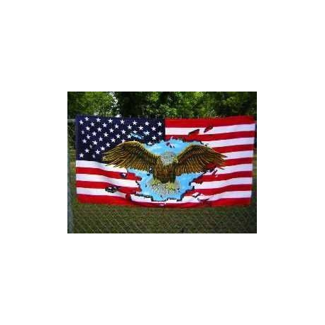 USA Eagle Beach Towel