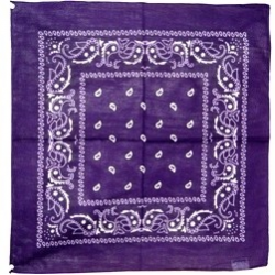 Paisley Bandana, Purple